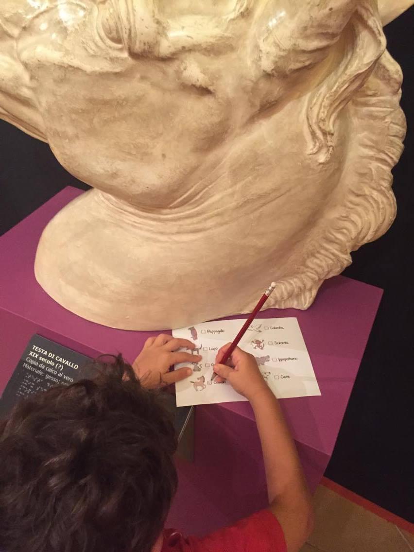 museo omero ancona