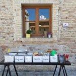 laboratori didattici la mole in famiglia museo omero ancona