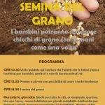 seminare il grano