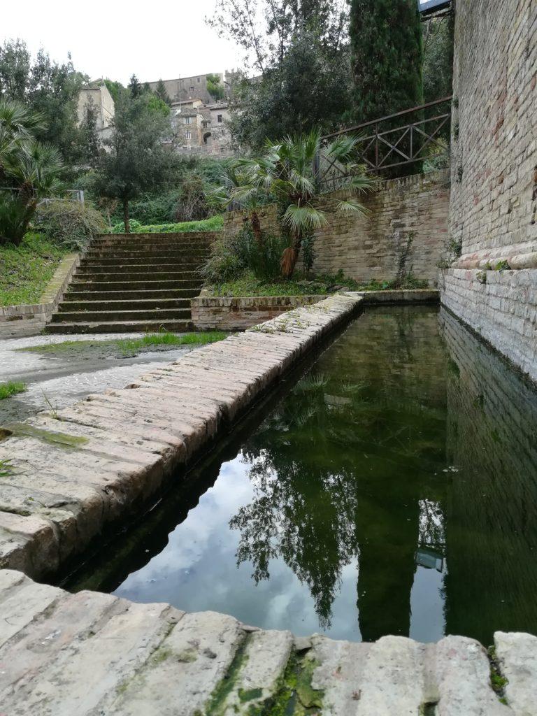 Fonte Maxima Morrovalle