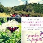 volare ancora insieme giardino delle farfalle cessapalombo