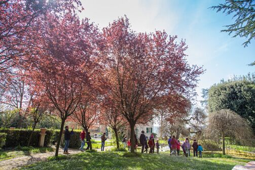 seghetti panichi caccia al tesoro botanico pasquetta 2019