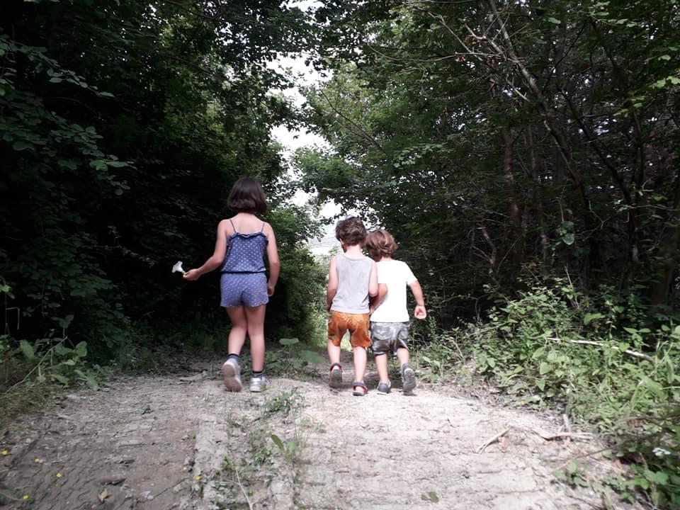 b&b per famiglie e bambini casa nel bosco ripa