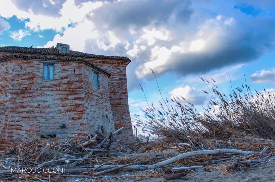 La Torre sul porto, Sentina, foto di Marco Cicconi