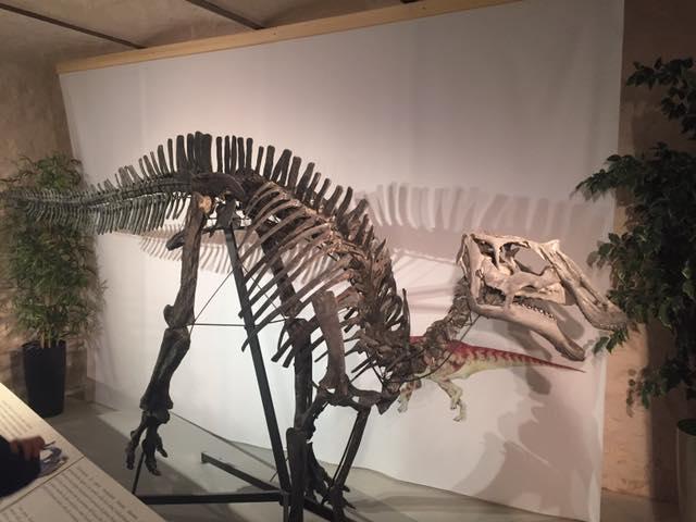 dinosauro di serrapetrona